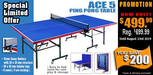 Ace 5 Ping Pong Table