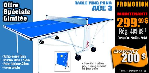 Table de tennis ping pong Ace 3